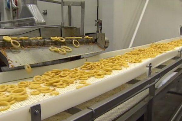 Milo-FAIS_Food processing_Onion-rings