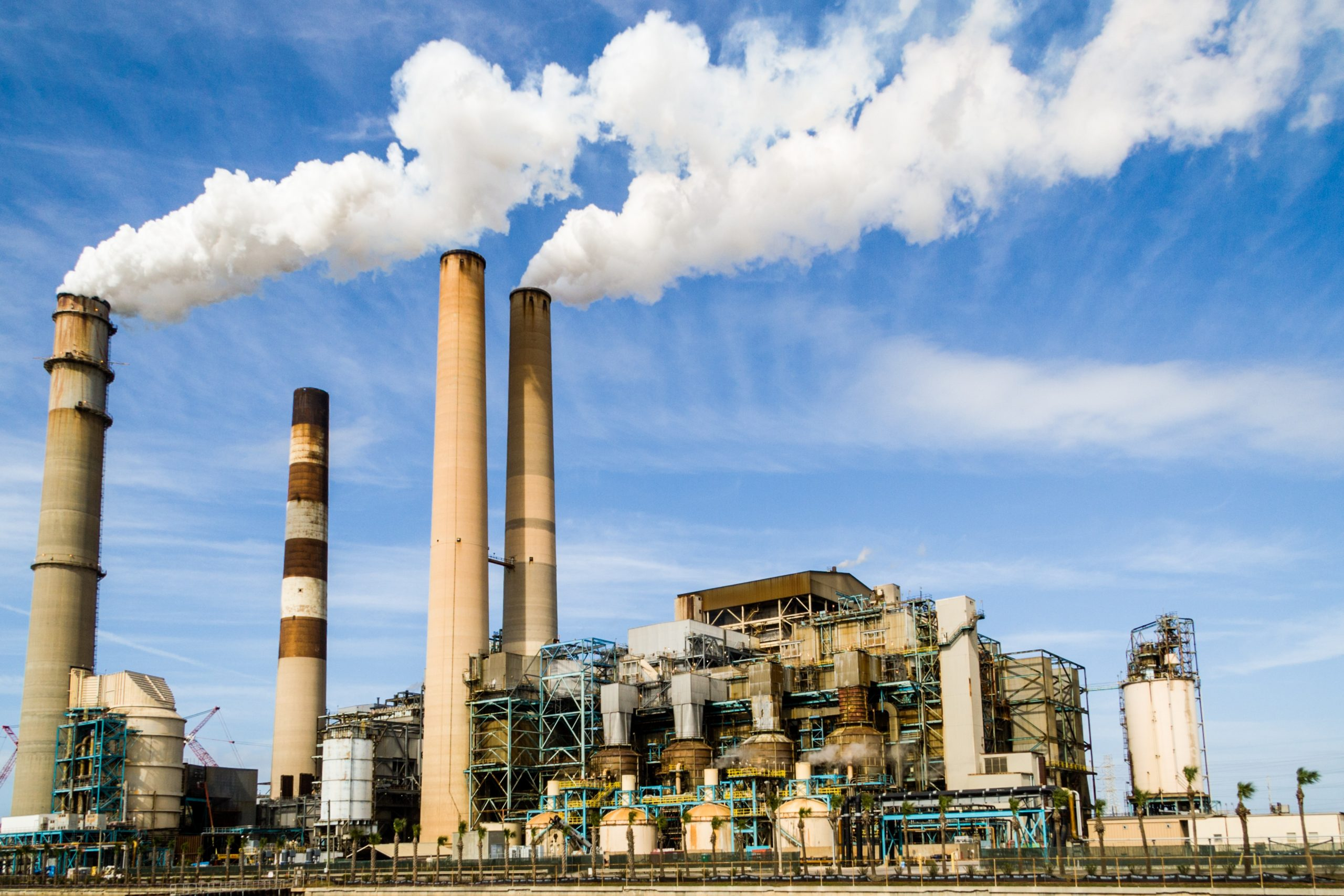 Selecting and Maintaining Steam Filters for Industrial Applications